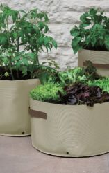 Light Weight Vegetable Patio Planters 3 Pack