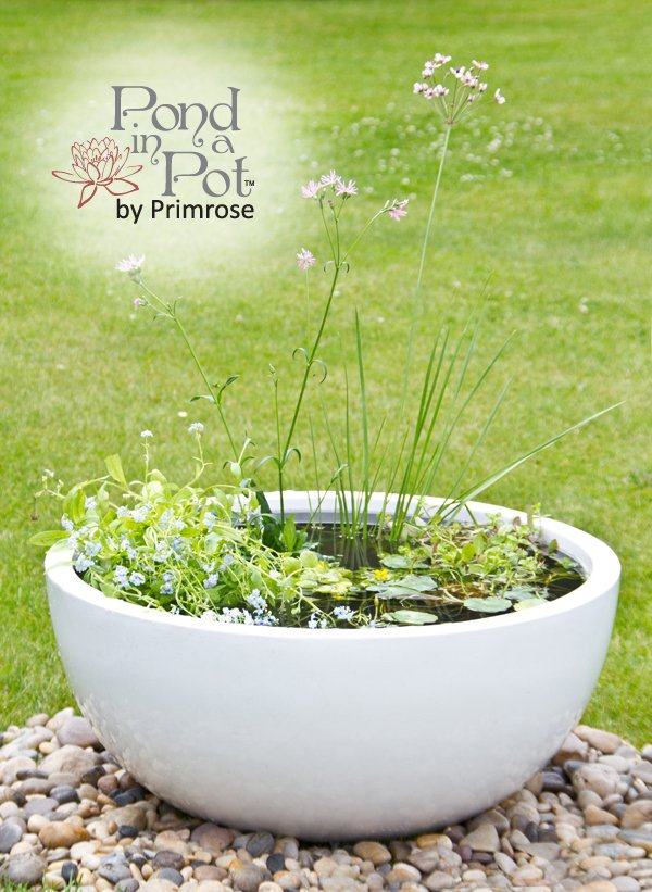 Wildlife Friendly White Pond-in-a-Pot Water Feature 72cm