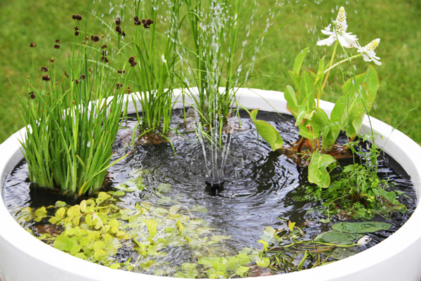 Semi shade white pond in a pot solar water feature 72cm for Container ponds with fish