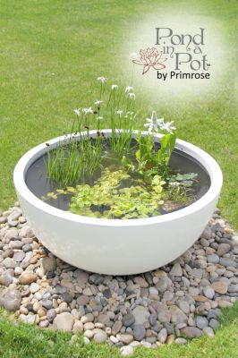 Semi Shade Pond in a Pot Kit with White Fibreglass 72cm Planter