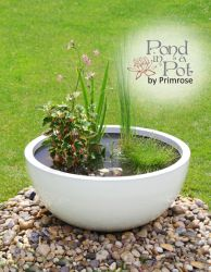 Sun Loving White Pond-in-a-Pot Water Feature 72cm