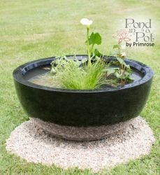 Sun Loving Black Pond-in-a-Pot Solar Water Feature 72cm