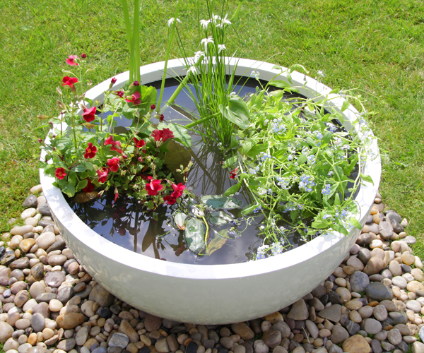 All Year Colour Pond in a Pot Kit with White Fibreglass 72cm Planter