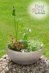 All Year Colour Pond in a Pot Kit with Grey Stone Resin 55.5cm Planter