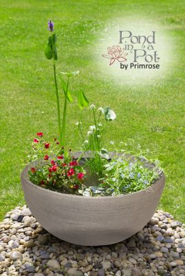 Sun Loving Pond in a Pot Kit with 55.5cm Grey Stone Resin Planter