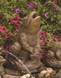 Spitting Frog Spitter Cast Stone Water Feature H36cm x W29cm