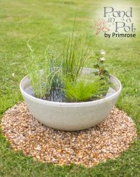 Wildlife Friendly Pond In a Pot Kit with 55cm White Cortina Stone Effect Planter