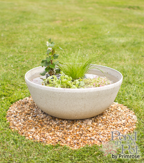 Semi Shade Pond In A Pot Kit with 55cm White Cortina Stone Effect Planter