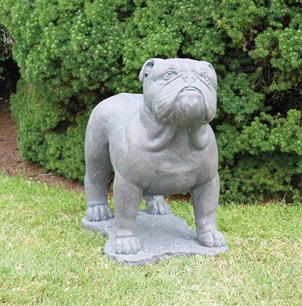 English Bulldog Cast Stone Statue H54cm x W32cm