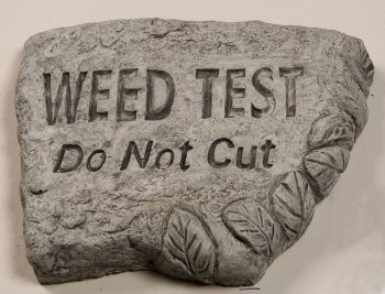 Weed Test Do Not Cut Cast Stone Garden Greeting Ornament H15cm x W20cm