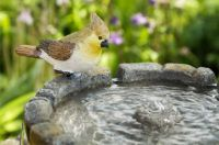 Cobbled Bird Bath and Solar Water Fountain by Solaray� - H68cm