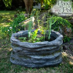 Semi Shade Natural Rock Pond-in-a-Pot Kit 83cm