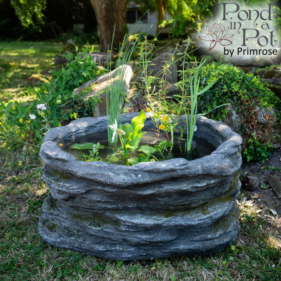 H35cm Natural Rock Wildlife-Friendly Pond-In-A-Pot Kit
