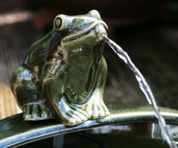 35cm Ceramic Frog Solar Water Feature by Solaray™