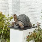 Tortoise Water Feature