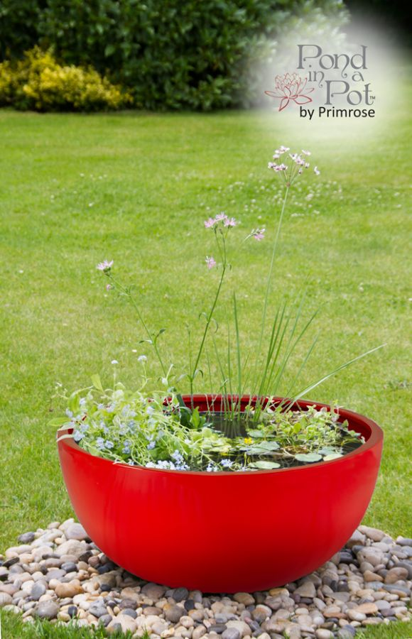 H34cm Red Pond-In-A-Pot Wildlife-Friendly Water Feature