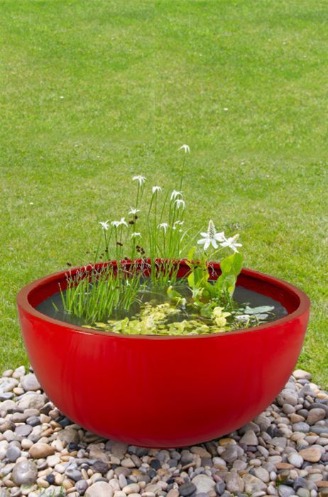 Semi Shade Red Pond-in-a-Pot Water Feature 72cm