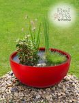 Sun Loving Pond in a Pot Kit with 72cm Red Fibreglass Planter