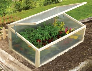3ft 3in x 2ft Chestnut Cold Frame