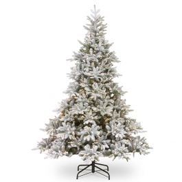 6ft Frosted Andorra Prelit LED Fir Artificial Christmas Tree