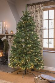 6ft North Valley Spruce Prelit LED Artificial Christmas Tree