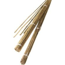 2.2m Bamboo Canes (Pack Of 10)