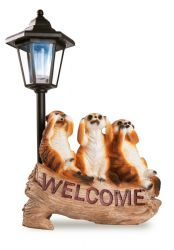 Wise Welcome Meerkats with Solar LED Light