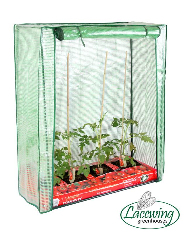 Lacewing™ 3ft 1in x 1ft 1in Reinforced Tomato Growbag Greenhouse