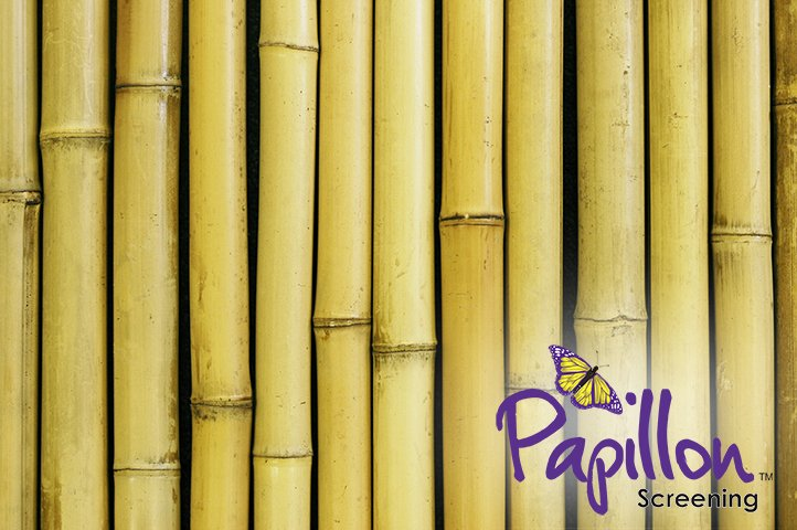 1.9m x 1.8m Thick White Bamboo Screening Roll by Papillon™