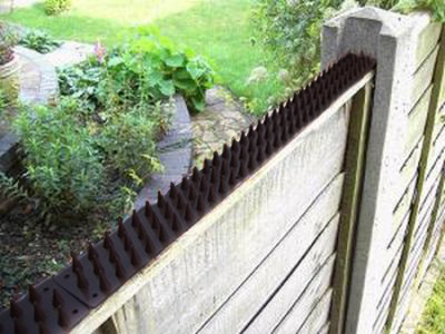 Fence and Wall Spikes - Black