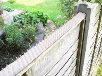 Fence and Wall Spikes - White
