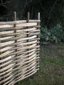 Split Hazel Hurdle