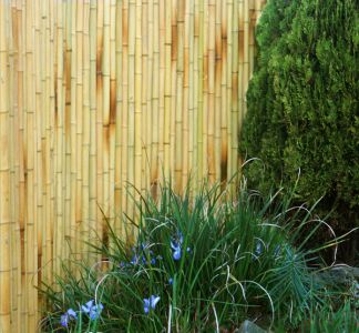 Thick Bamboo Screening - White