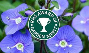 What is RHS Award of Garden Merit (AGM)?