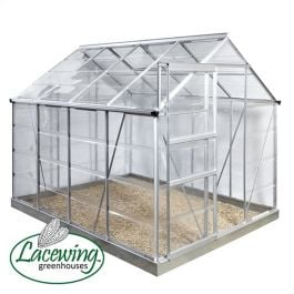 Lacewing™ 6Ft x 4Ft Cristal Polycarbonate Greenhouse