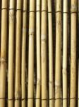 4.0m x 1.0m Peeled Reed Natural Fencing and Screening by Papillon™
