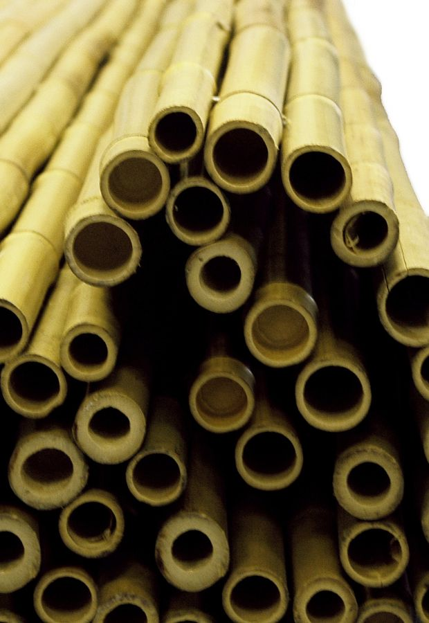 Thick White Bamboo Fencing Screening Roll 1.9m x 1.8m (6ft 2in x 6ft) - By Papillon™
