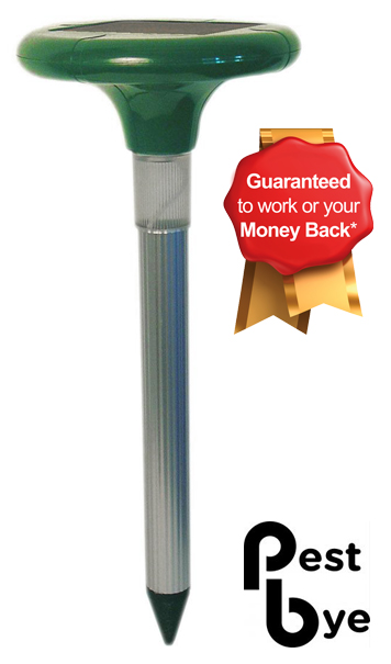 PestBye® Advanced Solar Mole Repeller