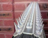 The Ultimate Guide to Fence and Wall Spikes