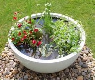 Pond Pots - Pond In A Pot
