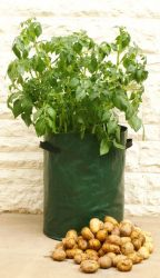 Lightweight Potato Barrel Planters - Pack of 3