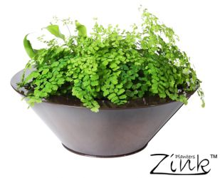 Zinc Galvanised Dark Bronze Bowl Planter - Small H10cm x D30cm