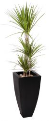 100cm Zinc Galvanised Black Tapered Cube Planter - By Primrose™