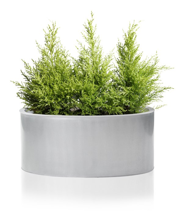 W40cm Silver Low Oval Zinc Galvanised Planter - By Primrose®