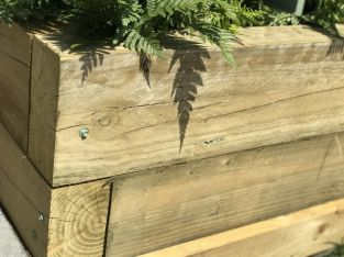 FSC Green Softwood Sleeper 12.5 x 25 x 240cm