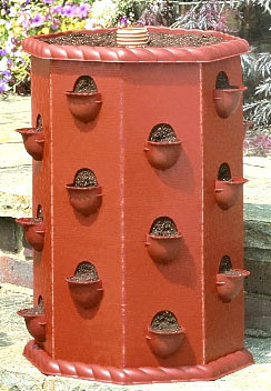 Strawberry Fruit Planter Barrel