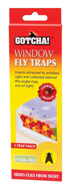 Window Fly Trap