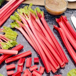 Rhubarb 'The Sutton' | 3L Pot
