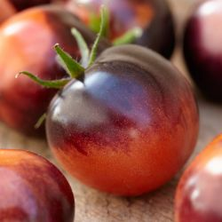 Tomato 'Chocolate Cherry' | 8.5cm Pot | By Gourmet Vegetables