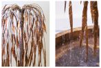 Weeping Willow Copper Tree Water Feature
